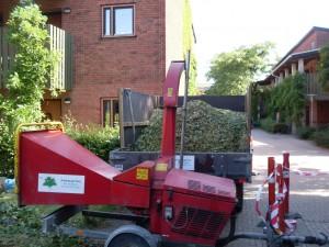 Flishugger igang med at omdanne et nyfældet træ til flis, der kan anvendes til fyring eller ukrutsdække ved nyplantning.