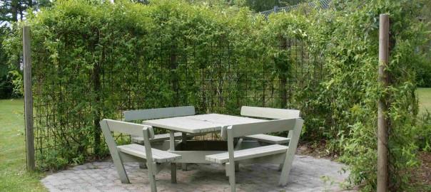 læhegn_og_terrasse