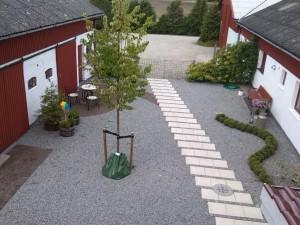 Gårdsplads med nyplantet lindetræ, med vandingspose der kan indeholde 75liter vand, som langsomt siver ud af posen, så træet når at optage vandet.