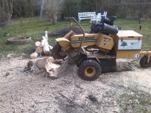 Rodfræser igang med at fjerne stub efter et større træ.